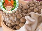 Thành phần dinh dưỡng của nấm rơm, một trong những loại nấm phổ biến nhất hiện nay tại Việt Nam